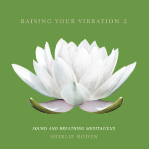 raising-vibration-two-shirlie-roden